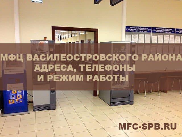 мфц василеостровского района спб